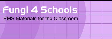 Classroom resources for Secondary schools