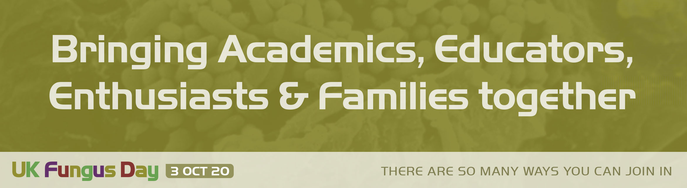 Bringing Academics, Educators, Enthusiasts & Families together