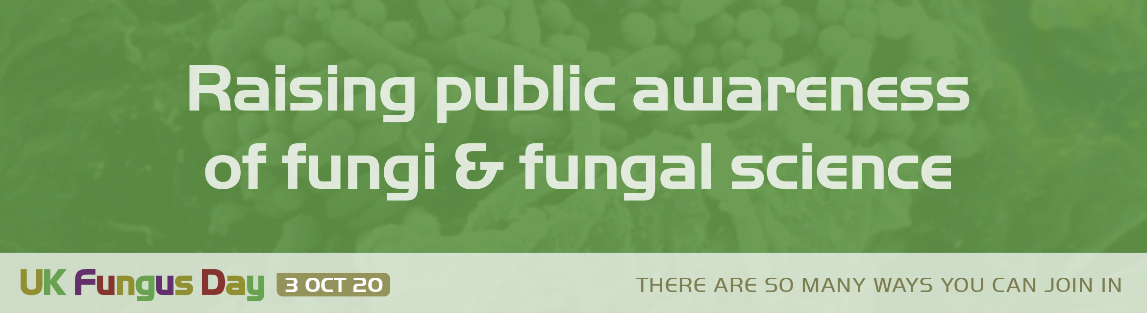 Raising public awareness of fungi & fungal science
