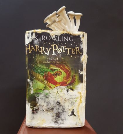 Oyster mushrooms degrading Harry Potter and the Chamber of Secrets