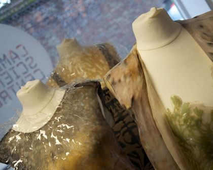 Fungal inspired fashion at Cambridge science Centre